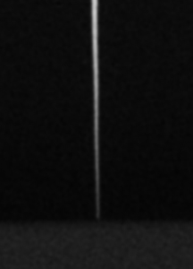 Figure 4 - Tip of #6 Endo File - Only 60 Microns in Diameter